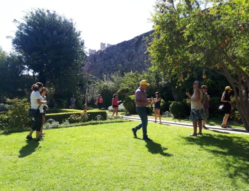 Opening of the garden of the Foundation